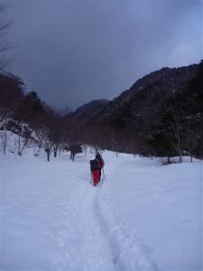 2011-01-23-004.jpg