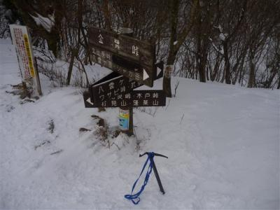 2011-01-23-031.jpg