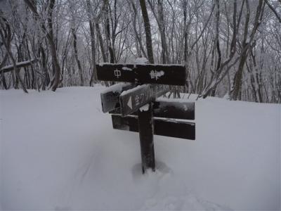 2011-01-23-039.jpg
