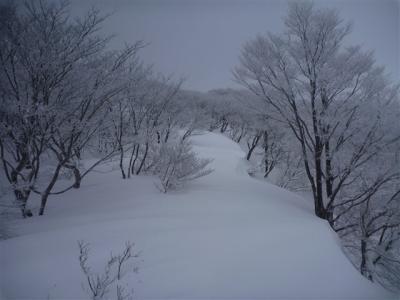2011-01-23-044.jpg
