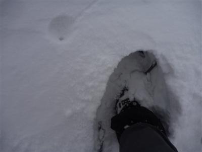 2011-01-23-046.jpg