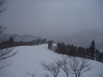 2011-01-23-102.jpg