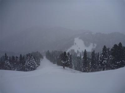 2011-01-23-104.jpg