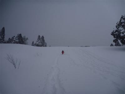 2011-01-23-105.jpg