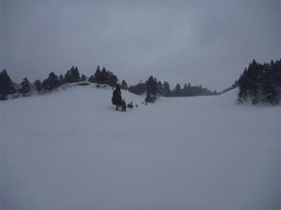 2011-01-23-110.jpg