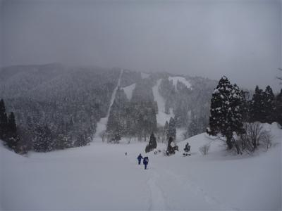 2011-01-23-111.jpg