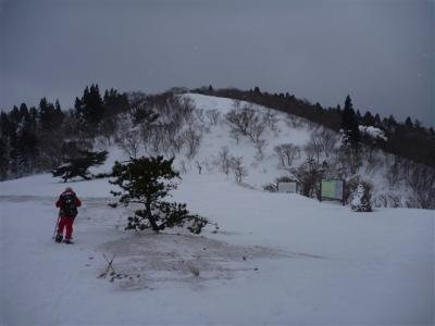 2011-01-23-114.jpg