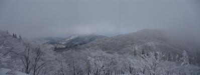 2011-01-23-p.jpg