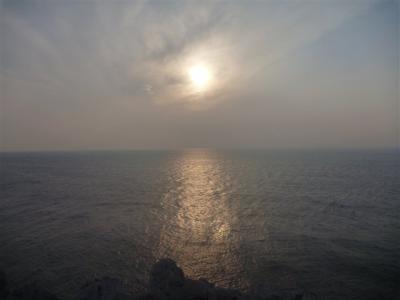 2011-02-05-020.jpg