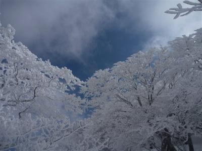 2011-02-13-044.jpg