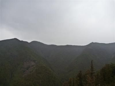 2011-03-06-043.jpg