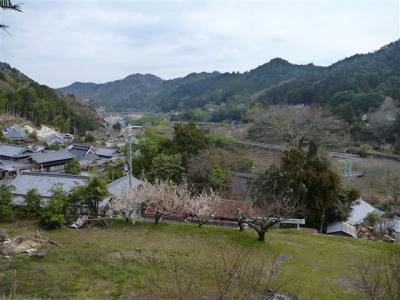 2011-03-20-044.jpg