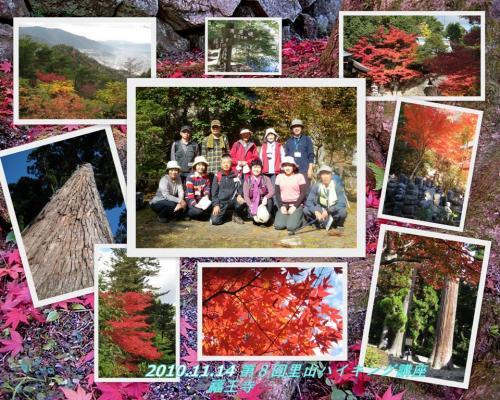 2010-11-12.jpg