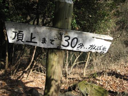 朝日山IMG_4222
