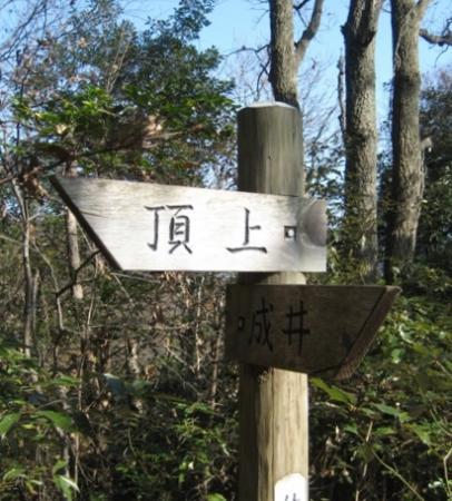 朝日山IMG_4223-1