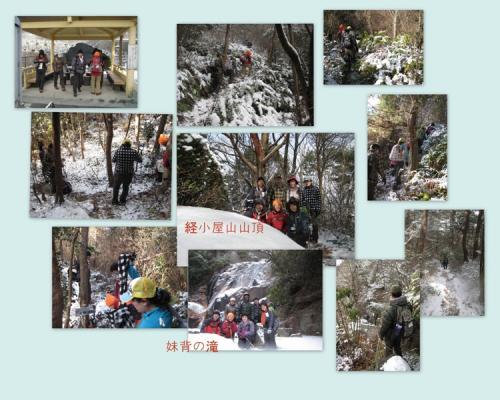 2011-01-17.jpg