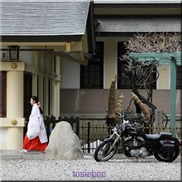 巫女とバイク