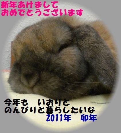 新年挨拶2011