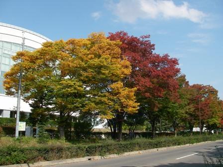 長野運動公園2