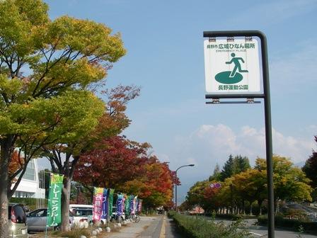 長野運動公園4