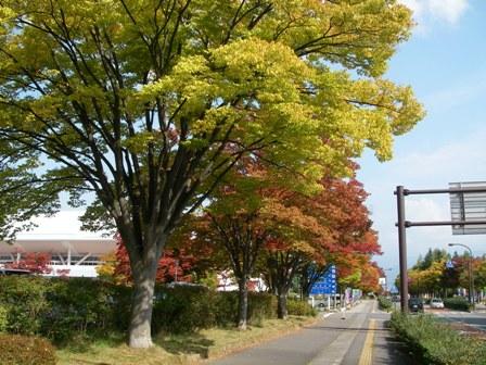 長野運動公園5