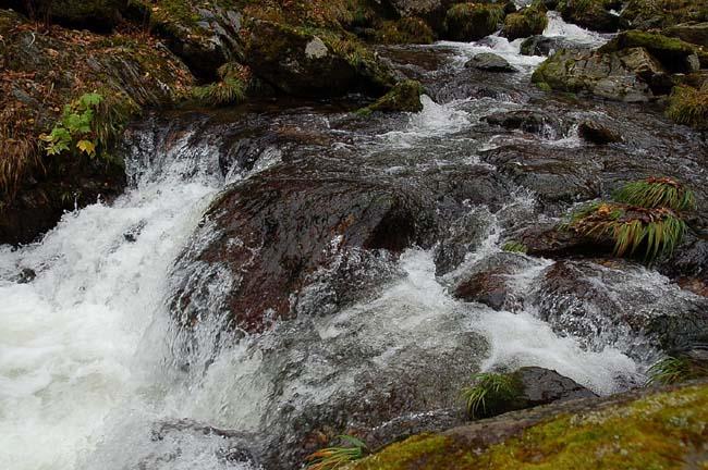 10.23.夫婦の滝 (20)
