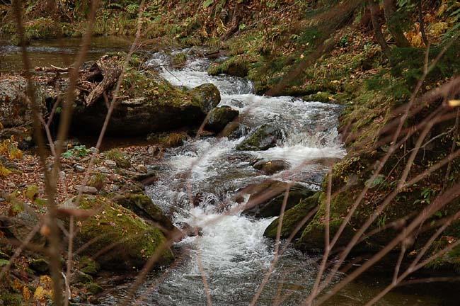 10.23.夫婦の滝 (43)
