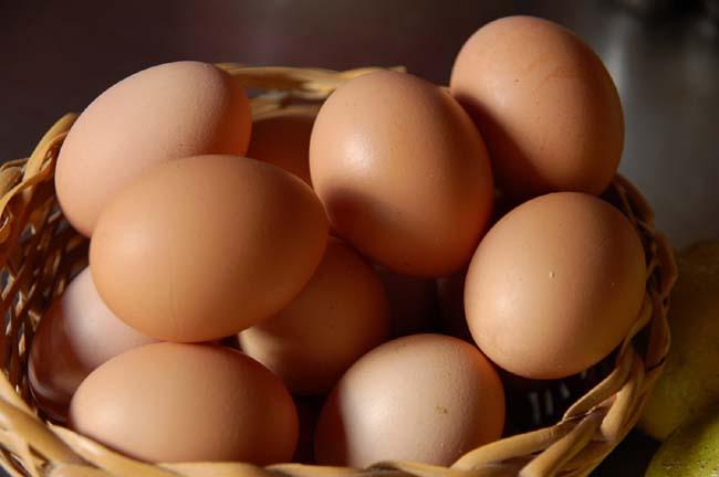 アガペさんの卵