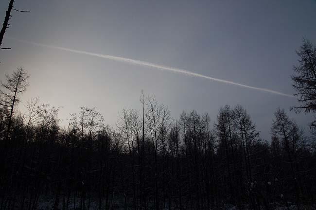 11.13-9℃ (7)