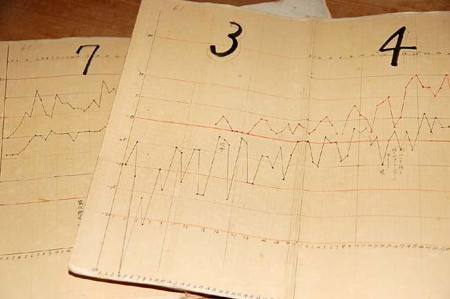 気温折れ線グラフ