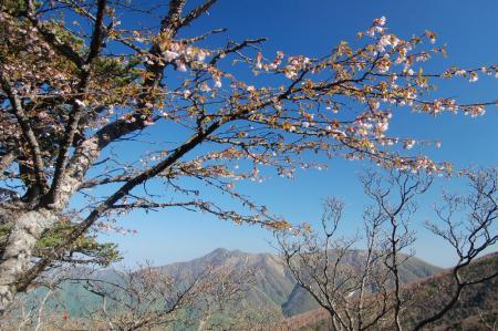 三倉山の稜線