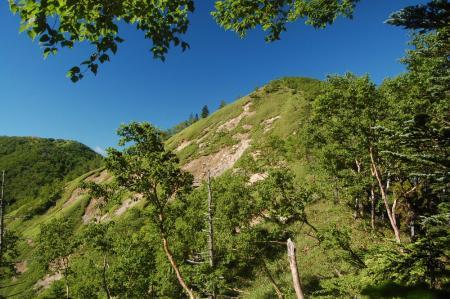 五色山への尾根