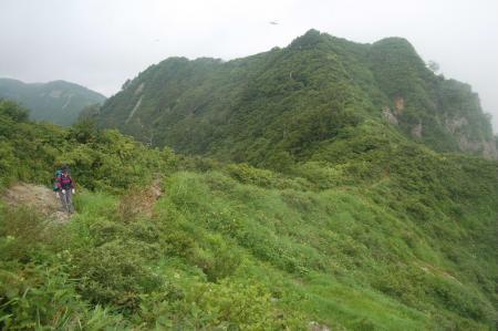 種蒔山への尾根