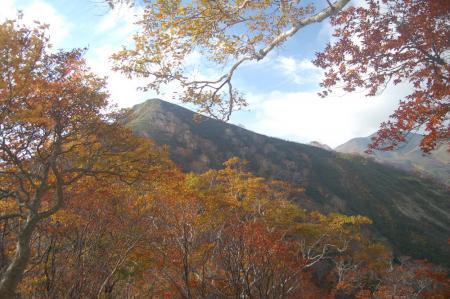 小朝日岳11