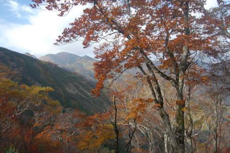 大朝日岳12