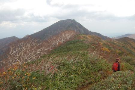 小朝日岳とブナ33