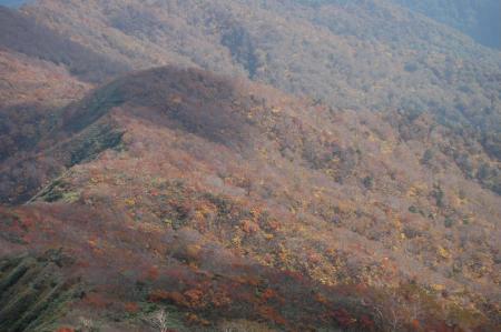 山頂からの紅葉39