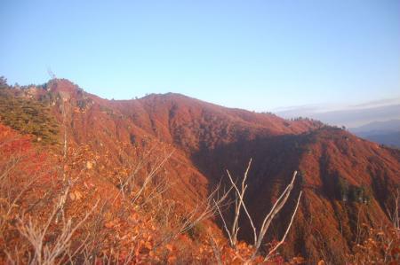錦衣の山4