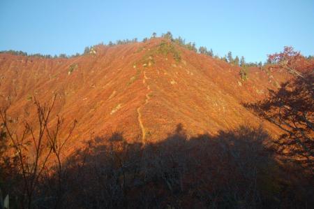 錦衣の山5