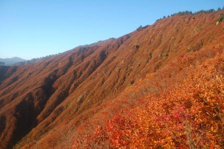 錦衣の山8