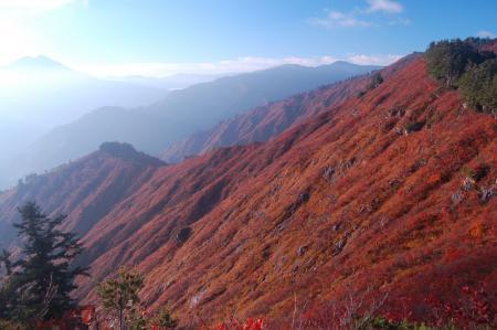 錦衣の山11