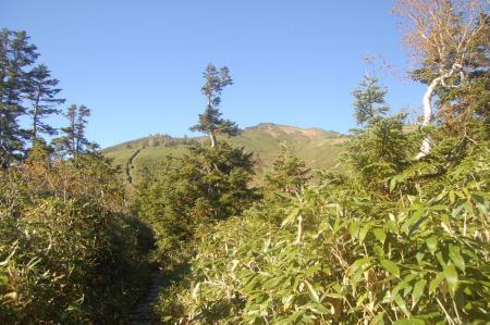 平ヶ岳21