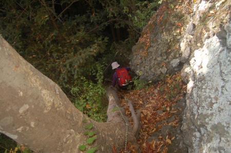 篭岩山からの尾根15