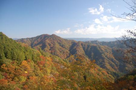 中武生山19