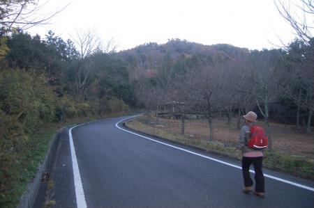 2林道を歩く