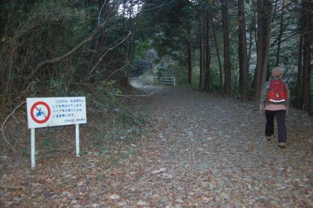 5林道終点