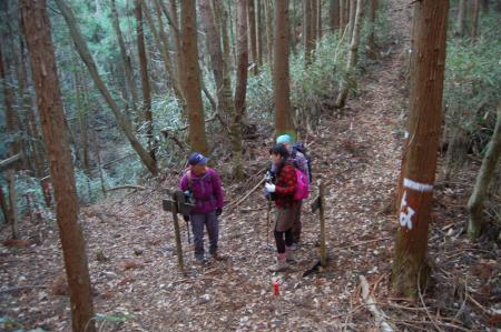 5ハイキングコース