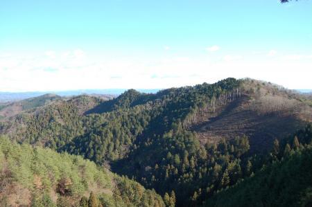 14鶏足山への尾根