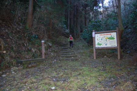 8高峰林道終点