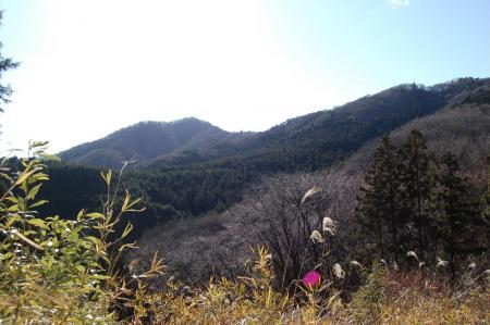 21難台山